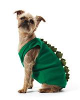 dino-costume-1011mld107618.jpg