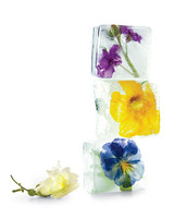 icecubes-flowers-0511mld107066.jpg