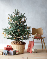 good-things-tree-basket-mld107860.jpg