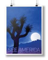 see-america_joshua-tree_c-adam-s.-doyle.jpg