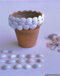 Shell-Covered Pots