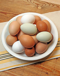 1116_craft_eggs.jpg
