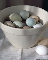 Eggs 101