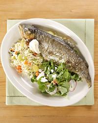 4103_022709_trout.jpg