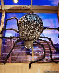 Black Spider Craft