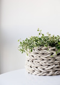Keep Your Houseplants Cozy with an Adorable Knitted Planter