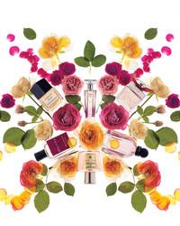 A Dozen Rose Perfumes