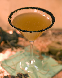 5026_102809_cocktail.jpg