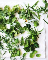 """EGG SHOP"" Excerpt: How to Master a Simple Herb Salad"