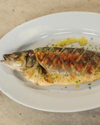 grilled-fish-mslb7081.jpg