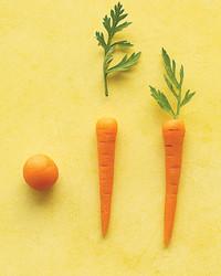 mld104228_0409_carrot.jpg