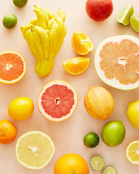 Our Definitive Guide to Winter Citrus