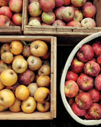 Changing the Way We Think About Apples