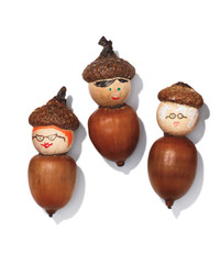 "Craft a Cute Acorn ""Family"""