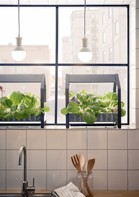 Ikea Is Selling the Coolest Hydroponic Gardening Kits