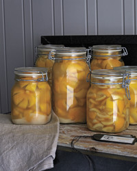 preserved-lemons-0026-mld109636.jpg