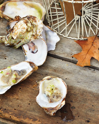 mld105491_1110_stonebarn_oysters.jpg