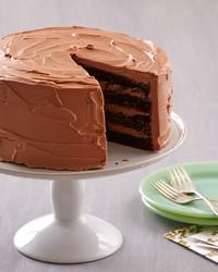 chocolate-sponge-cake-0440-d112647.jpg