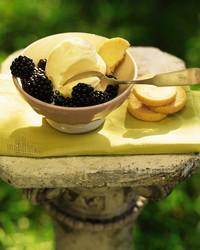sweet-corn-ice-cream-0701-mla98519.jpg