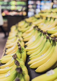 The Next Big Thing in Milk is Bananas, Really