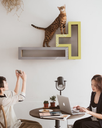 Your Cats Double As Wall Art with These Tetris-Inspired Scratchers