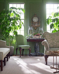 Martha's Green Room in Bedford: 5 Ways She Decorates with Lush Plants