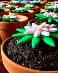 Flour Power! How to Make Cupcake Flowerpots