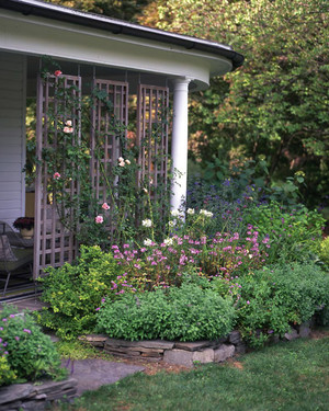 60 Great Ideas for the Garden