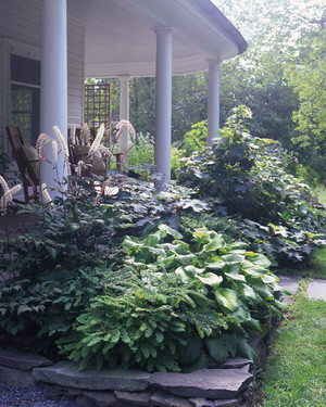 Garden Tour: Foundational Makeover