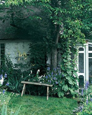 Garden Tour: A Flowering Home