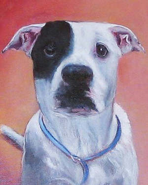 Shelter Pet Paintings