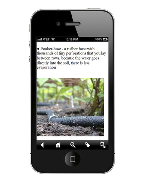 Our Favorite Apps for Your Garden and Yard