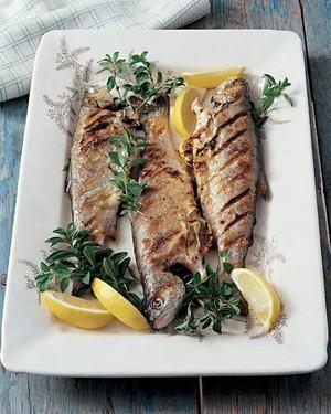 ml205k5_0502_grilled_trout_oregano.jpg