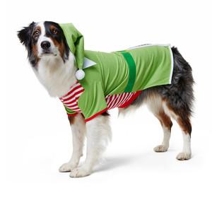 Martha Stewart Pets Elf Holiday Costume