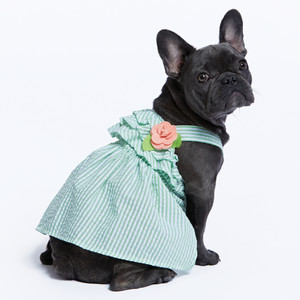 Martha Stewart Pets® Seersucker Dress