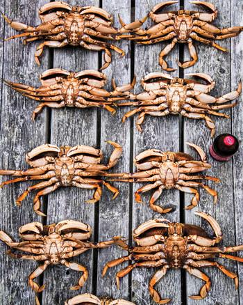 crabbing-28-d111488.jpg