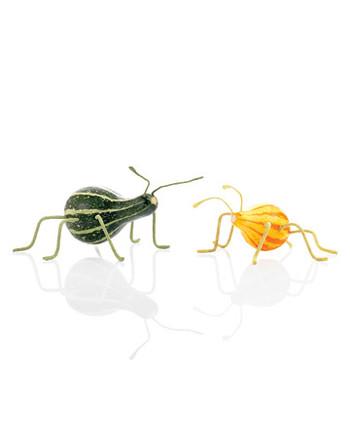 mld103667_1008_bugs.jpg
