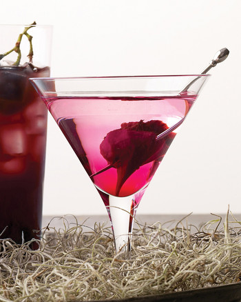 msd104879_hal09_martini.jpg