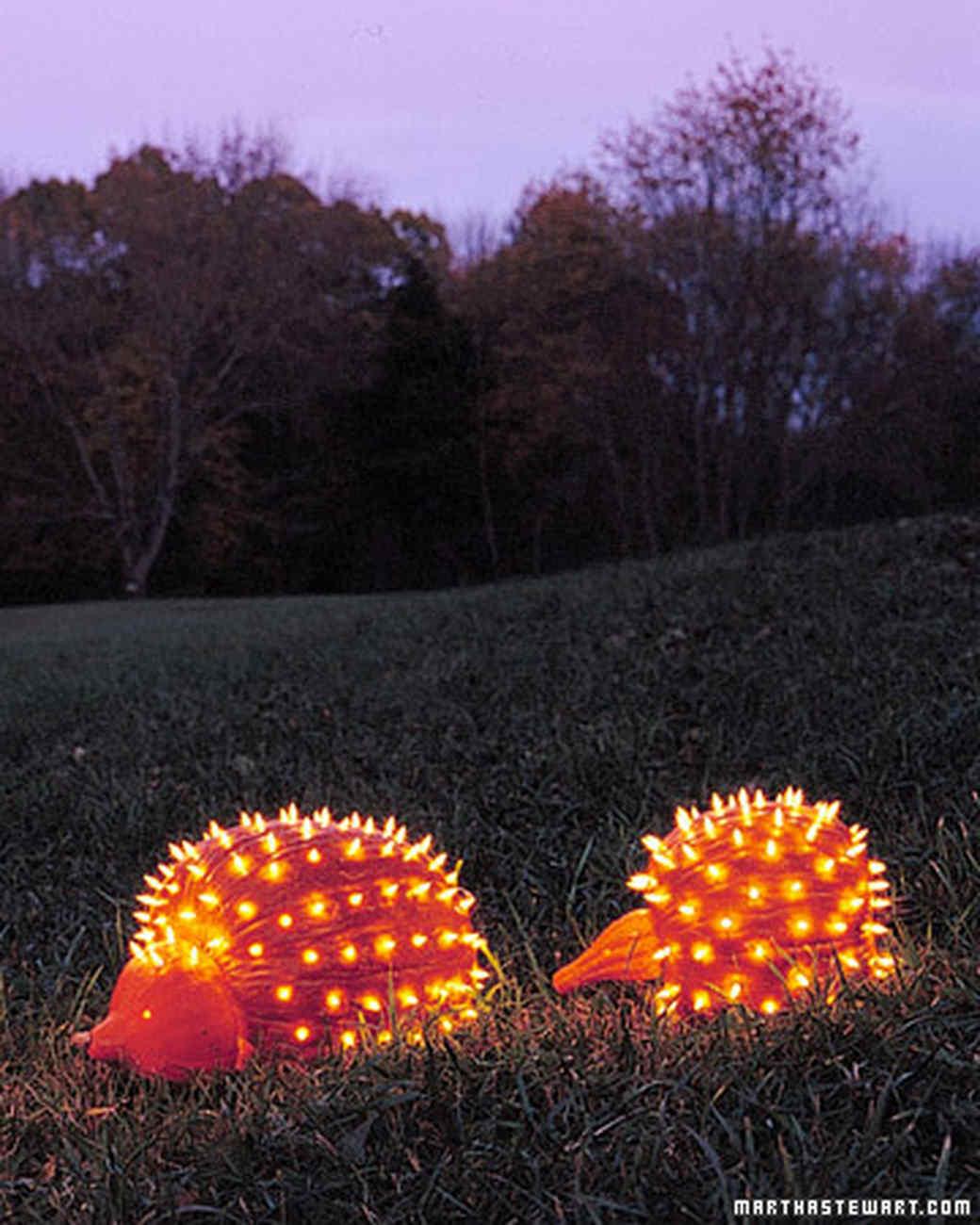 Pumpkin creatures porcupines martha stewart