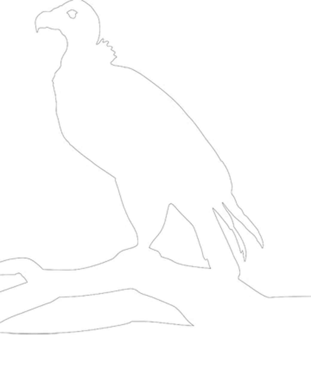 msl_1008_bird.jpg