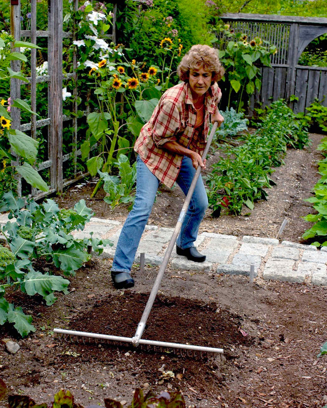 How to Lay Out a Planting Bed Martha Stewart