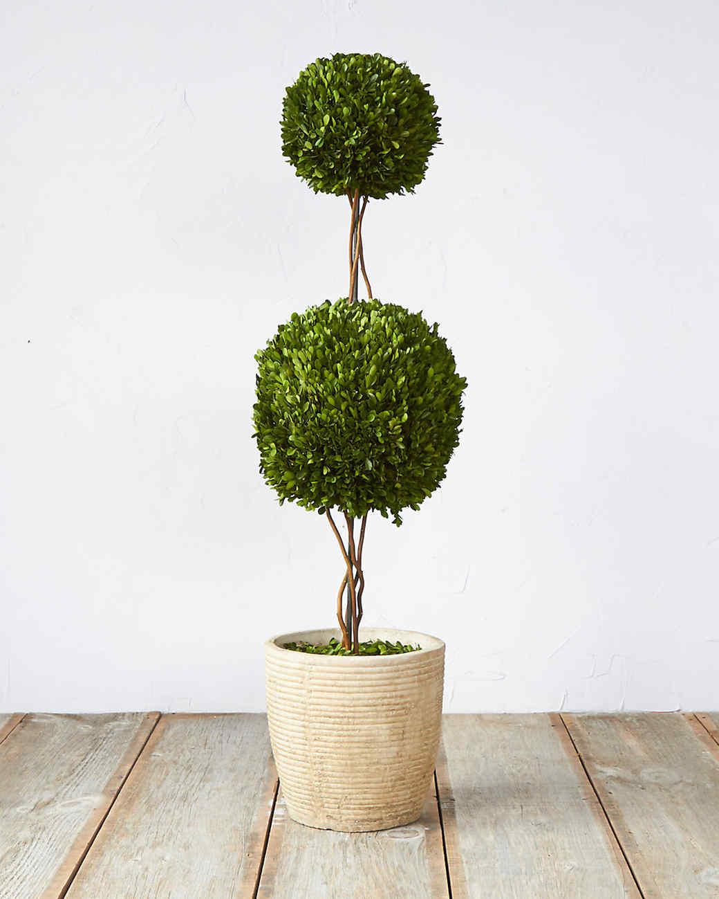 terrain-topiary.jpg