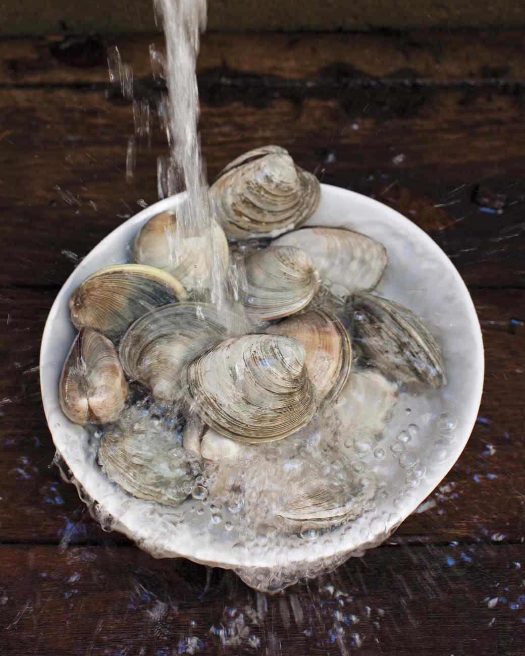 clams-1-mld107734.jpg