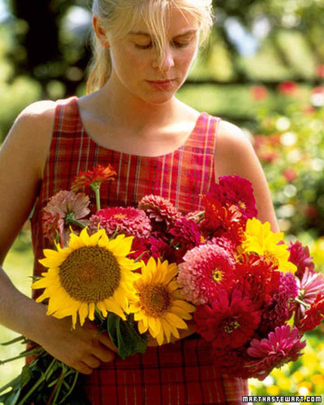 ft_flowergarden01_m.jpg