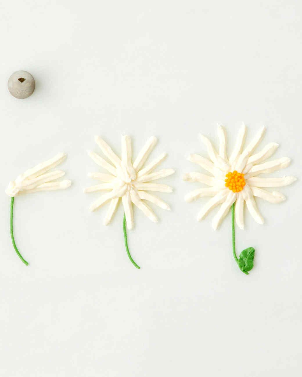 pipe-daisy-htb112.jpg