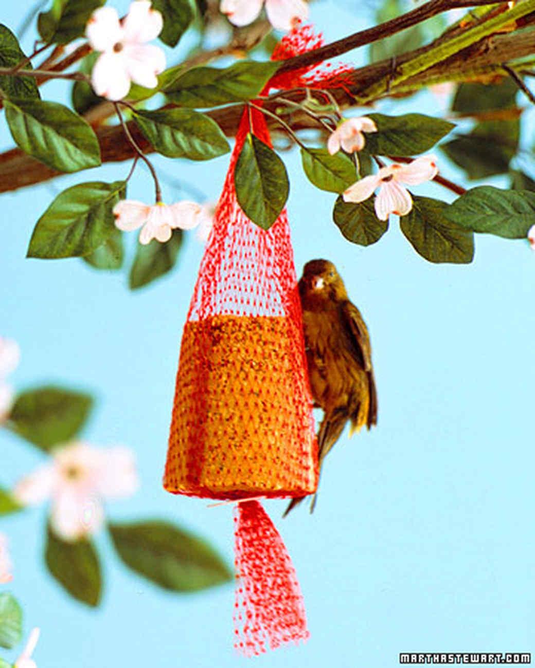 a100611_win06_bird.jpg