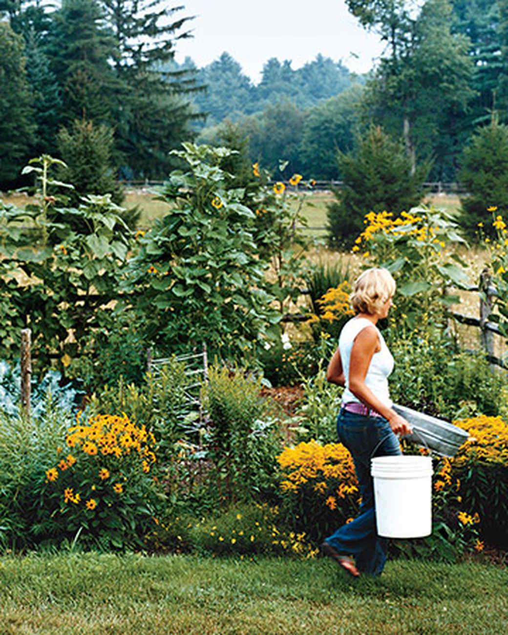 Planning a Garden Martha Stewart