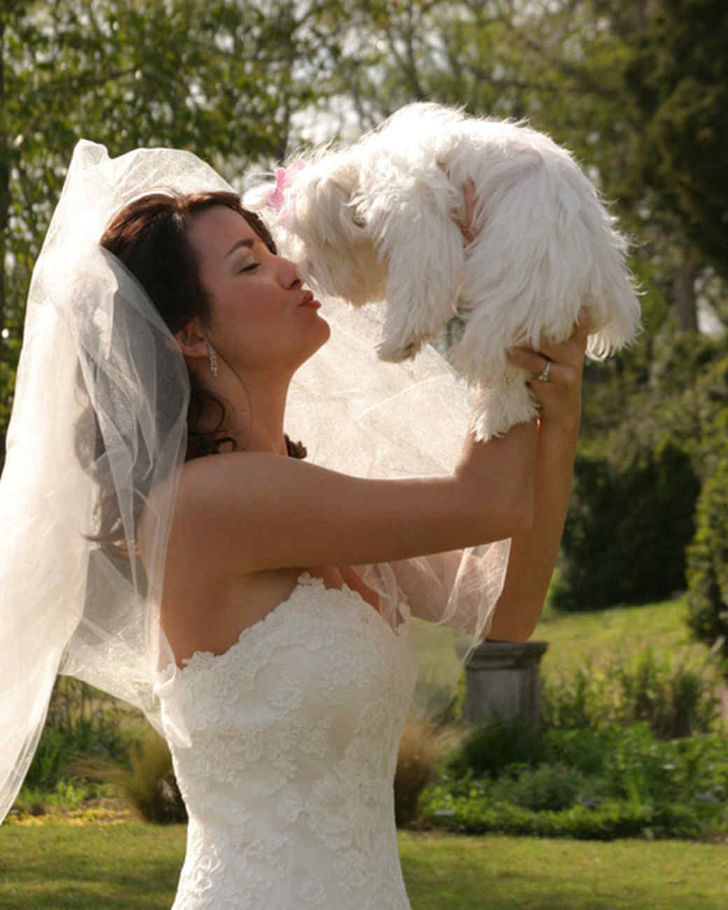pets_wedding_89721.jpg
