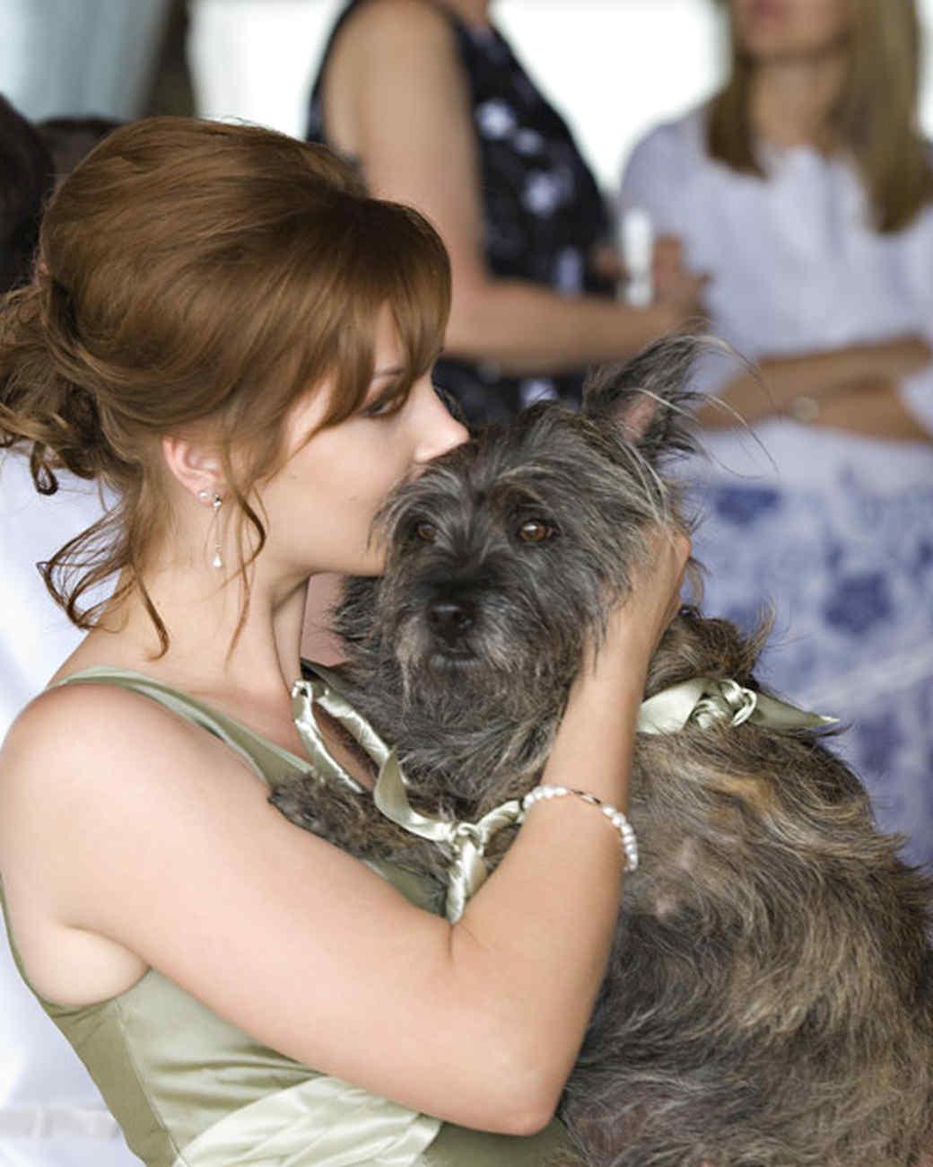 pets_wedding_91127.jpg