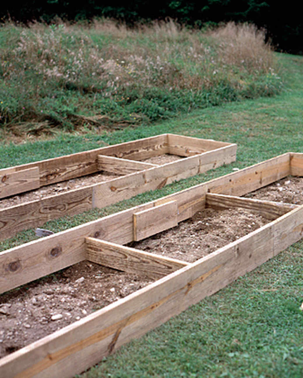 raised-beds-4-1215.jpg